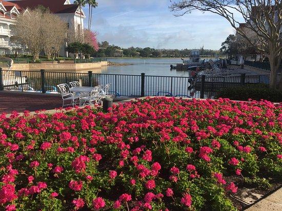 Disney's Grand Floridian Resort & Spa: Marina Area