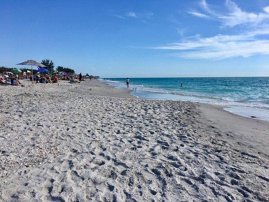 Manasota Key Beach : photo3.jpg