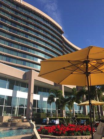 Grand Hyatt Tampa Bay: photo2.jpg