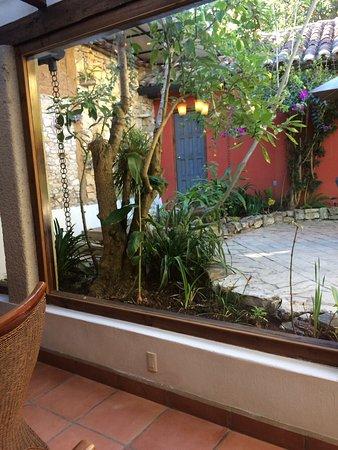 Vista del Comedor a Jardin - Bild von Guayaba Inn, San Cristobal de ...