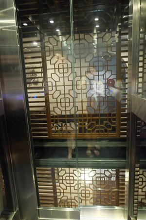 Hotel Puri: This is their glass lift :)