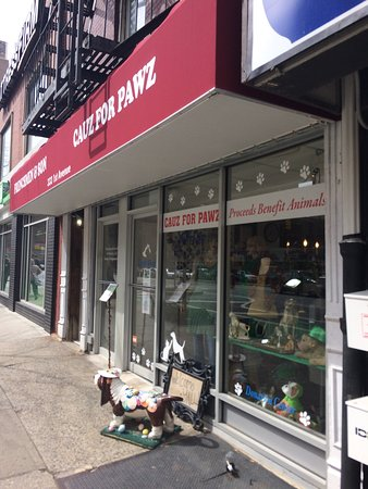 Photo of Thrift / Vintage Store Cauz for Pawz at 212 E 23rd St, New York, NY 10010, United States