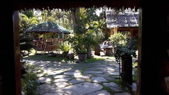 Hibiscus Garden Inn: tuin