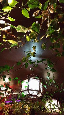 Fleur de lotus: faux plafond végétal