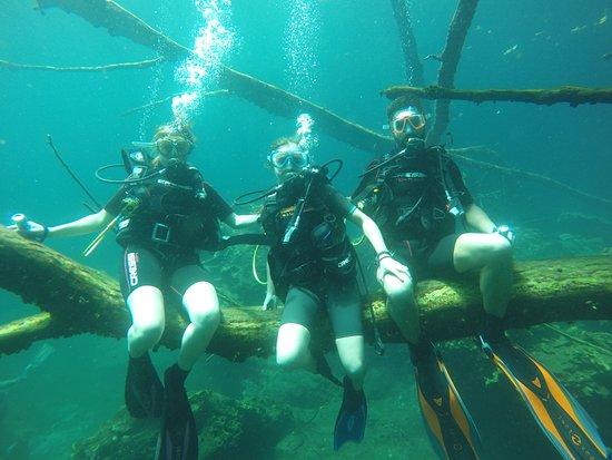 Turtle Dive Center: Petite escale familiale dans le lac Dudù...