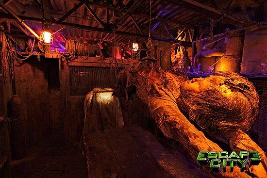 """Tonawanda, NY: Escape City Buffalo """"Body Collectors"""""""
