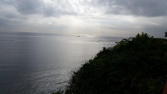 Sea Cliff Hotel: 20170307_080515_large.jpg