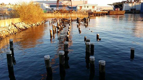 Kuzey Vancouver, Kanada: 20141203_154543_large.jpg