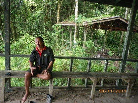 Kinabatangan Jungle Camp: Campens guide !