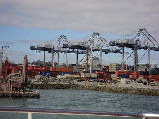 Fullers Auckland Harbour Cruise: commercial docks
