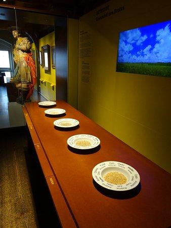 Museum der Brotkultur: The first exhibit