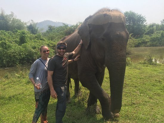 Boon Lott's Elephant Sanctuary : After a nice cooling bath!