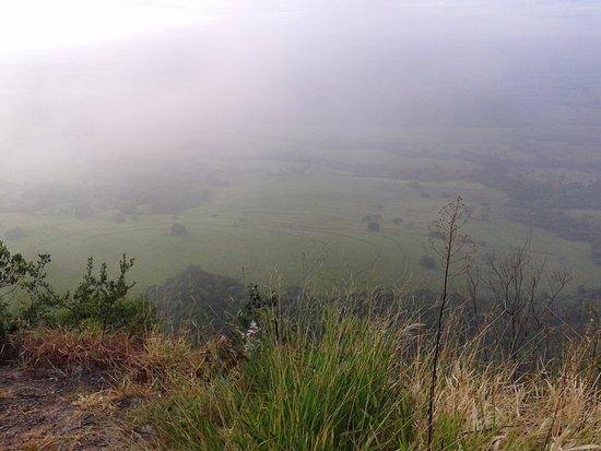 Cassia dos Coqueiros, SP: Ao nascer do sol, a neblina.