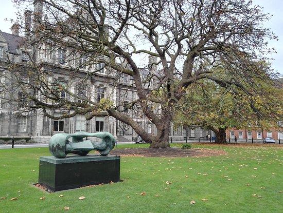 Parc int rieur picture of trinity college dublin dublin for Parc d interieur
