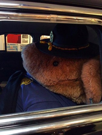 Alaska Law Enforcement Museum: Safety Bear