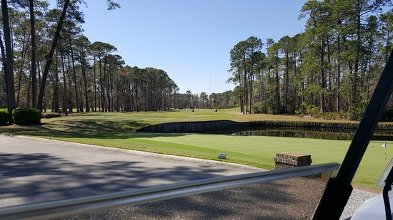 Hilton Head National: No Homes! Just Golf!