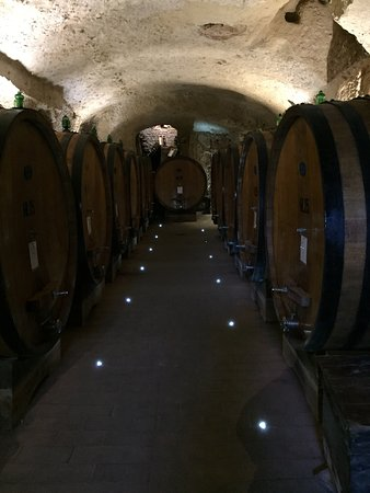 Montepulciano, Italië: photo5.jpg