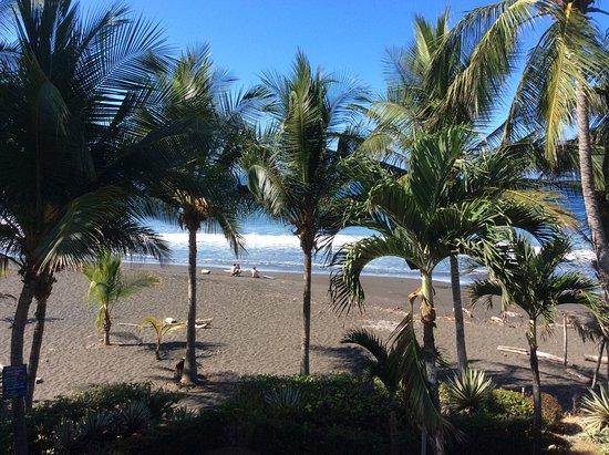 ذا باكيارد هوتل: view from our Backyard Hotel suite