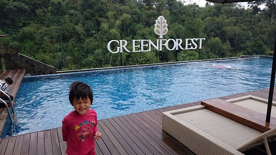 Green Forest Resort: Nice view from swimming pool,too bad no hot water