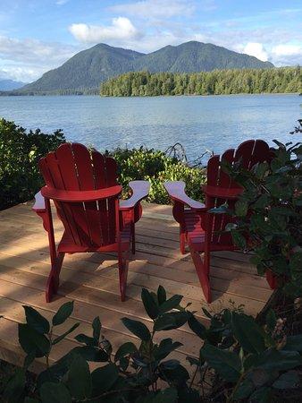 Black Bear Guesthouse: Guest viewing deck, Jensens Bay