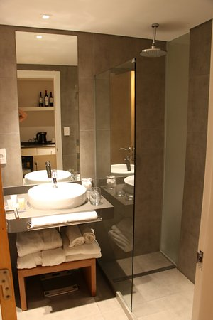 Own Montevideo: Deluxe Suite w Small Bathroom