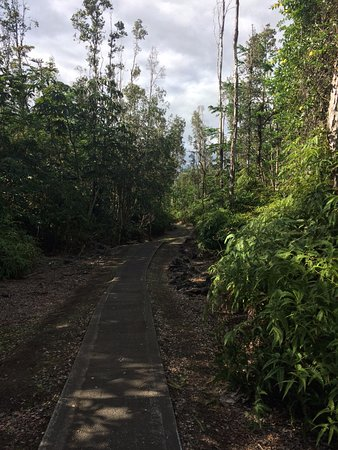 Lava Tree State Park: Narrow, well maintained path around the park