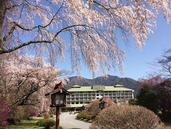 Fuji View Hotel Japanese Garden