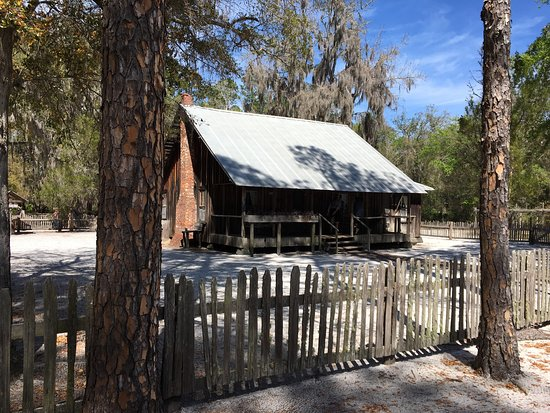 Okefenokee Swamp Park Waycross 2018 All You Need To