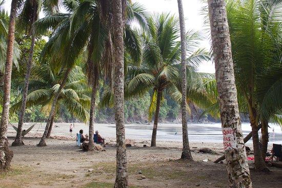 Ballena, Costa Rica: Pura Vida Living