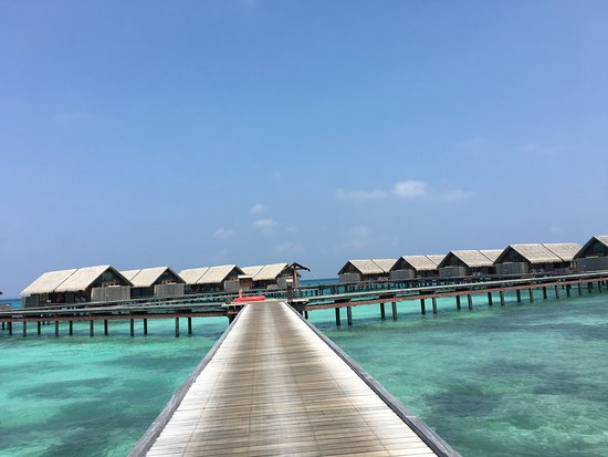 Zdjęcie Shangri-La's Villingili Resort and Spa Maldives