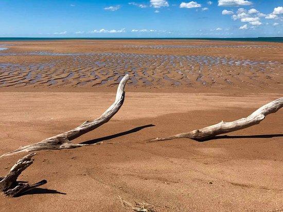 Hervey Bay, Australia: Low tide beauty