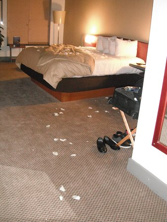 The Lofts Hotel: Rose petal turndown service as part of our hotel package.
