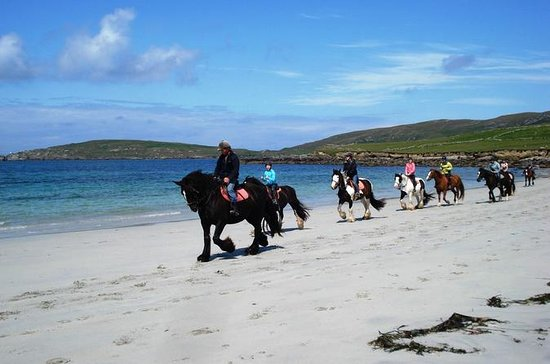 Guided Beach Horse Riding Excursion ...