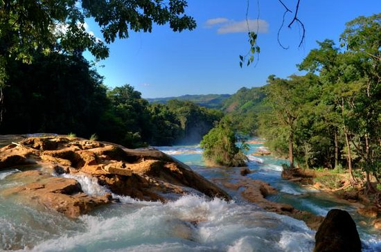 Agua Azul Waterfalls and Palenque...