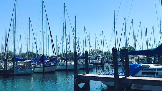 Gulfport, FL: The marina