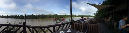 Kinabatangan District, Malaysia: photo9.jpg