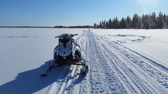 Snow Fun Safaris Lapland: 20170310_115938_large.jpg