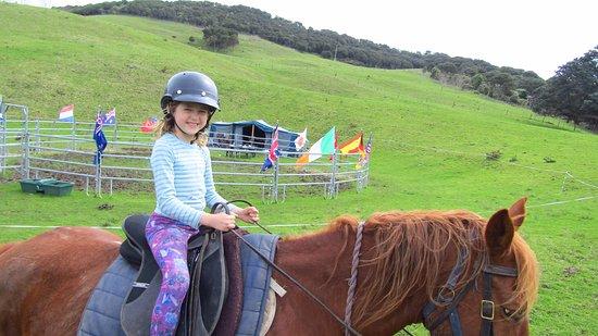 جزيرة واهيكي, نيوزيلندا: Asha Old & Felix