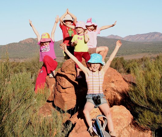 Flinders Ranges National Park, Austrália: Kids had a great time, look at the views in the background