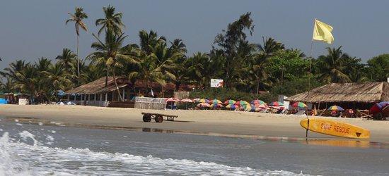Wilma's Coco Huts & Beach Resort