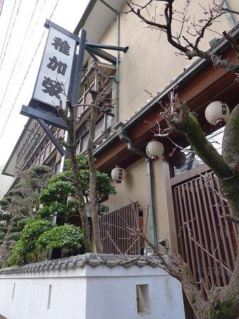 Chikae Fukuoka: photo1.jpg