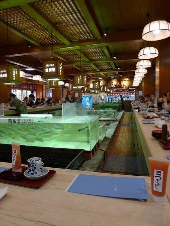 Chikae Fukuoka: photo3.jpg