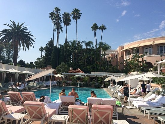 No Better Place Than The Pool At Beverly Hills Hotel To Spend Your Day In