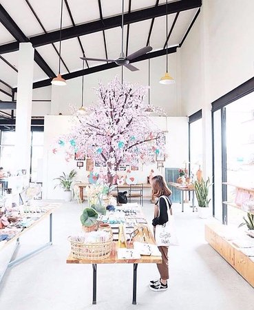 The Cherry Blossom Tree In The House Tet Decoration Picture Of