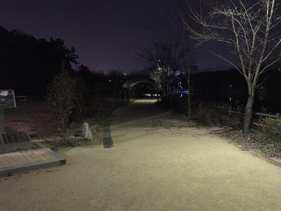 Gwangju, South Korea: photo4.jpg