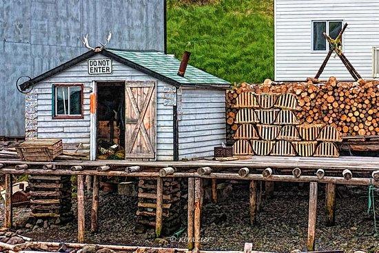 Newfoundland, Kanada: Trout River, Western Peninsula