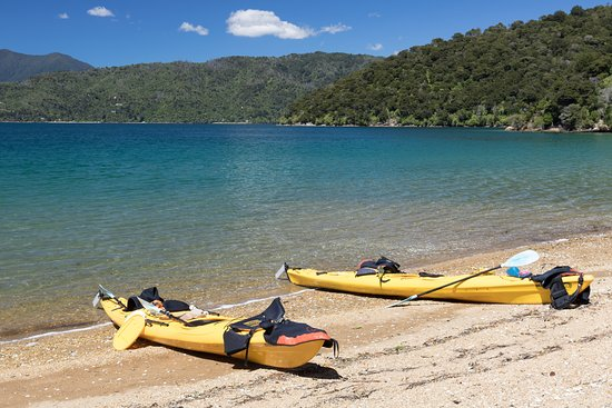 Sea Kayak Adventures: Marlborough sounds