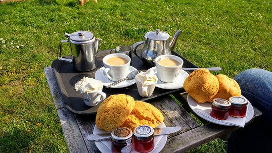 Marhamchurch, UK : Lovely cream tea!