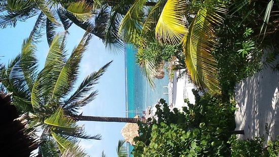 Xanadu Island Resort: 20170308_155059_large.jpg