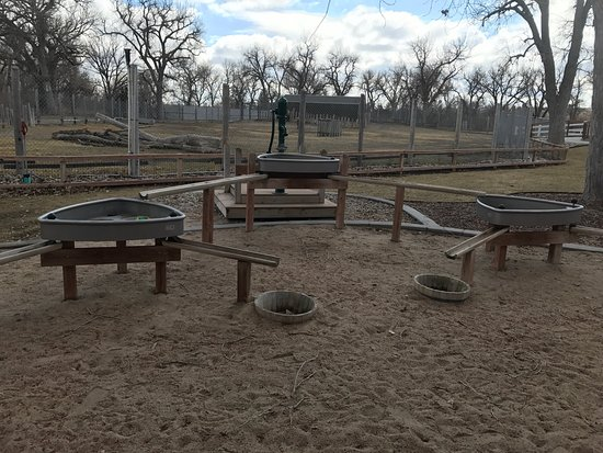 Scottsbluff, NE: A great nature play concept for kids to learn about waterways and an adorable Highland cattle!